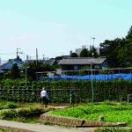 【国立】 都市農業と「地域活性化」のいま